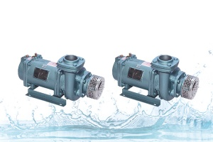 Domestic Submersible Pumps Manufacturer, supplier, exporter in India